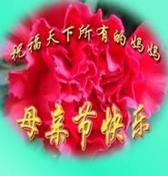 QQ图片20130512100733.jpg